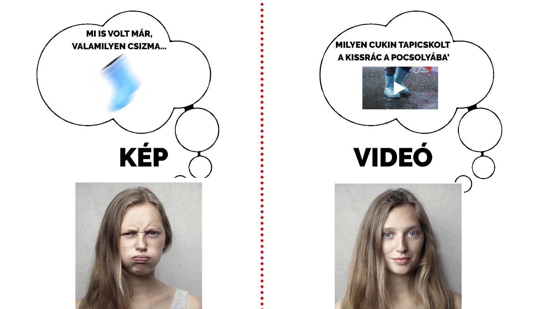 Shopvideo 6